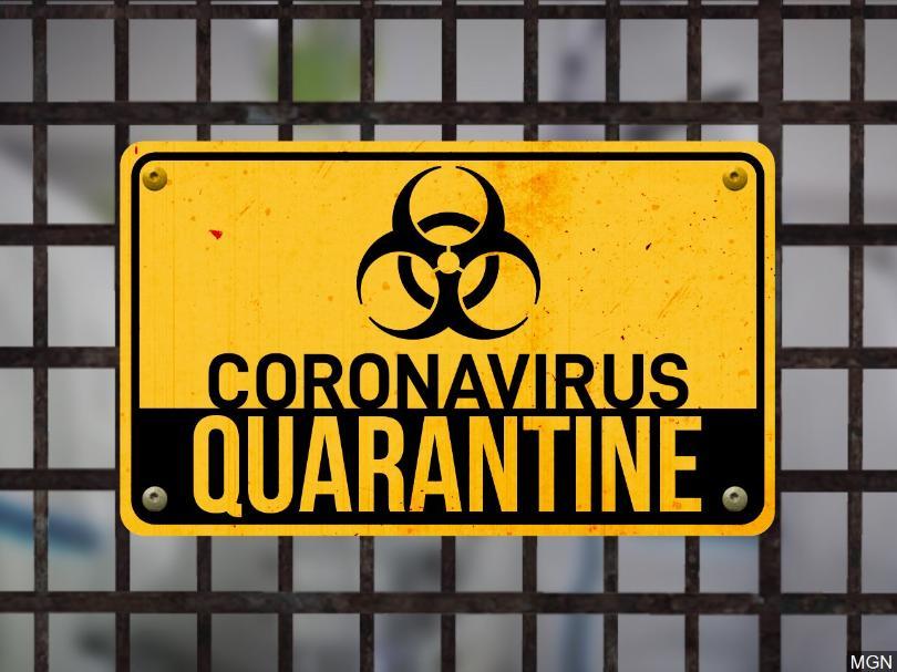 Quarantine - TheLeaflet